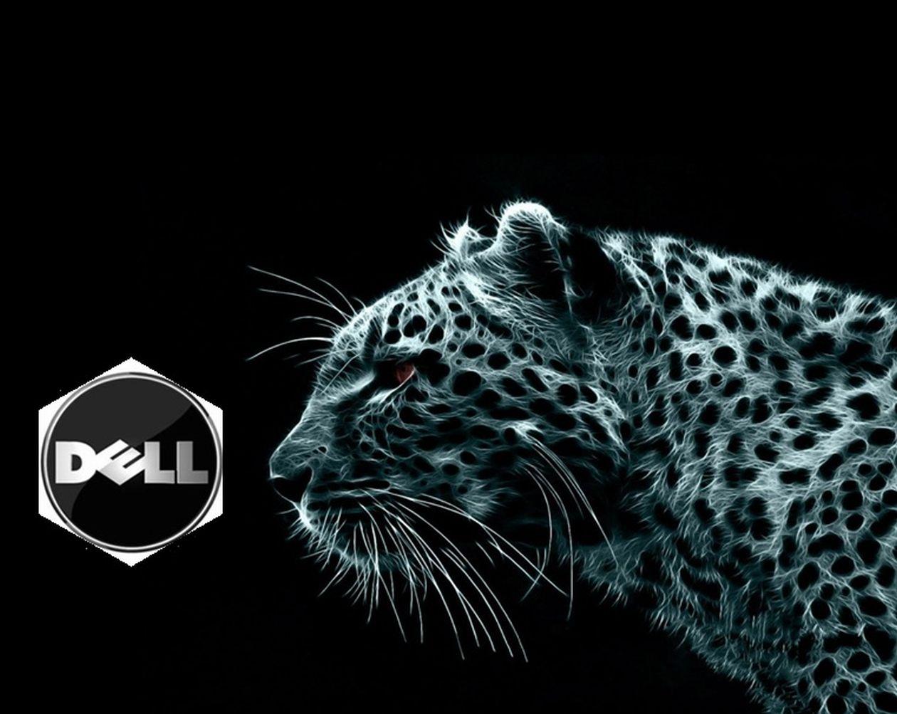 Dell Windows Xp にドライバをインストールする手順 dell愛好館